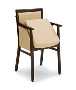 Elamis Filled in Side Arm Chair ELAM002 Image